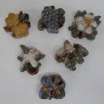 Moravian Flowers